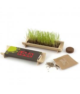 Kit de plantation jardinière en bambou, objet promotionnel eco et made in France