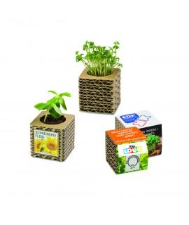 pot en carton à planter
