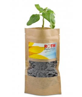 Green plant in customizable bag