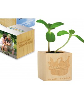 Mini wooden cube pot