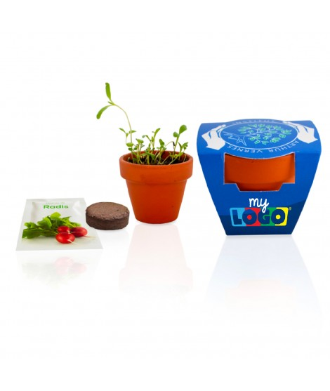 Kit de plantation, goodies éco pour les enfants